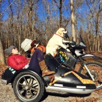 Dog Driving a Motorcycle.JPG